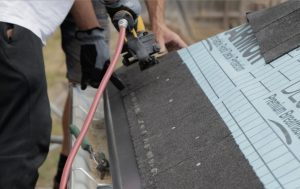 Starter strip roof shingles
